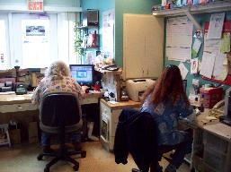 employees at Animal Medical Center of Bradenton